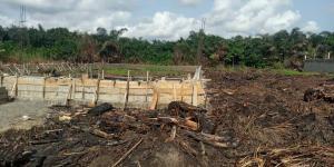Mixed   Use Land Land for sale Abule Ado Festac (Festac Extension) Festac Amuwo Odofin Lagos
