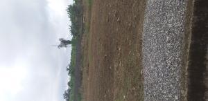 Mixed   Use Land Land for sale 3 Fagbile Phase 3 Isheri Oshun Isheri Egbe/Idimu Lagos