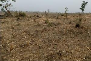 Land for sale - Karu Nassarawa