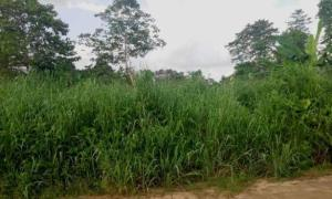 Mixed   Use Land Land for sale Ikot Eneobong Community Estate Off 8 Miles Calabar Cross River