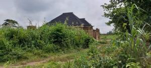 Residential Land for sale Powerline, Bye Siba, Omi Adio Omi Adio Ibadan Oyo