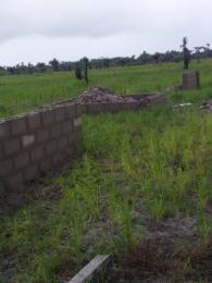 Land for sale Obeagu beside Centenary City Enugu Enugu