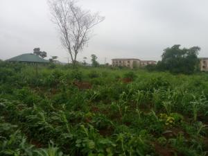 Land for sale Ikorodu Residential Scheme (gra 3) Ikorodu Ikorodu Lagos
