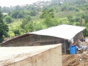 Land for rent kuala Ido Oyo