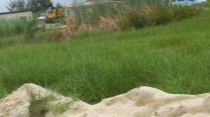 Residential Land Land for sale Chevon Drive Beside Northern Foreshore chevron Lekki Lagos