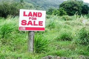 Mixed   Use Land for sale Inside A Mini Estate Agungi Lekki Lagos