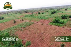 Commercial Land Land for rent Mowe Sagamu Sagamu Ogun