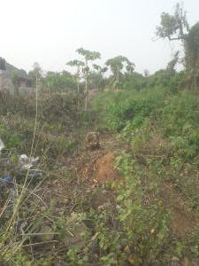 Land for sale Egborode Town Okpe Local Govt Warri Delta State Warri Delta