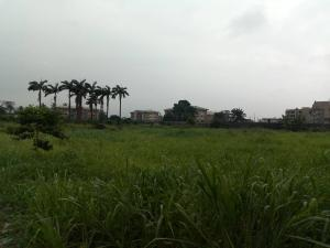 Land for sale Peace Estate Aboru Iyana Ipaja Ipaja Lagos
