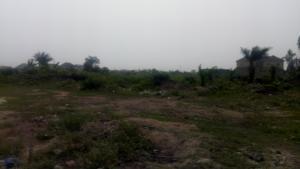 Mixed   Use Land Land for sale Ikota Villa Estate Ikota Lekki Lagos