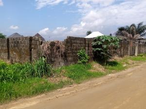 Residential Land Land for sale Cornerstone Rd, off NTA Obia-Akpor Port Harcourt Rivers