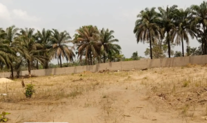 Residential Land Land for sale sunray estate amansea Awka North Anambra