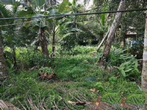 Residential Land Land for sale   Idokpa Community,  Uhunmwonde Edo
