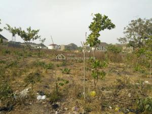 Residential Land Land for sale   Life Camp, After Berger Quarters,   Dape Abuja
