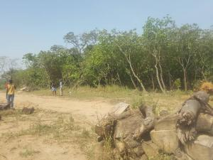 5 bedroom Residential Land Land for sale Along New kabusa Express way, Immediately after Apo mechanic Village. Apo Abuja
