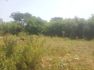4 bedroom Residential Land Land for sale Opposite Shema filling Station Katampe Katampe Main Abuja