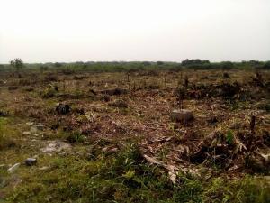 Serviced Residential Land Land for sale Kuje Fct Abuja Kuje Abuja