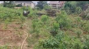 Residential Land Land for sale Etudo By Awknanaw Achara Layout Enugu Enugu