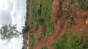Residential Land Land for sale Centenary City Enugu  Enugu Enugu