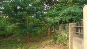 Land for sale Jabi Abuja