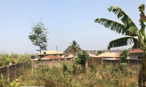 Residential Land Land for sale - Ife Central Osun