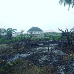Residential Land Land for sale New Layout Estate Egbelu Elimgbu Rumuokwurushi Port Harcourt Rivers