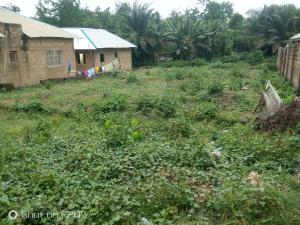 Residential Land Land for sale Behind Lifeforte School, Apete Ibadan polytechnic/ University of Ibadan Ibadan Oyo
