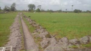 Land for sale Akodo Ise LaCampaigne Tropicana Ibeju-Lekki Lagos