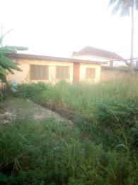 Detached Bungalow House for sale  Santos Estate ,Akowonjo  Akowonjo Alimosho Lagos