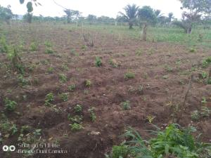 Mixed   Use Land for sale Peacemind Estate Ifo Ifo Ogun