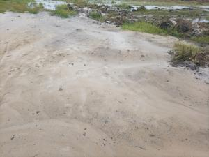 Residential Land Land for sale Homeland Estate (Igando Orudu) on Coastal Road, Behinde Amen Estate Eleko Ibeju-Lekki Lagos