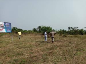 Serviced Residential Land Land for sale Channels Tv Avenue Kosofe Kosofe/Ikosi Lagos