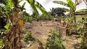 Mixed   Use Land Land for sale Off Aka Road, Opposite Champions Brewery Uyo Akwa Ibom