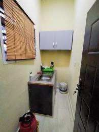 1 bedroom mini flat  Boys Quarters Flat / Apartment for rent Agungi Lekki Lagos