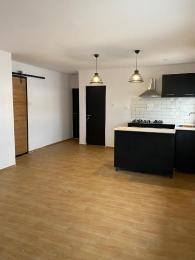 2 bedroom Blocks of Flats House for rent Maitama main Maitama Abuja