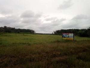Serviced Residential Land Land for sale Oakwood City estate opposite new airport lpo Port Harcourt Rivers
