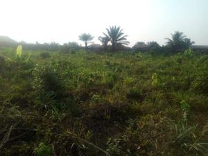 Commercial Property for sale President Paint Area Idiroko Ado Odo/Ota Ogun