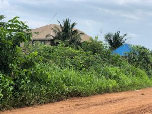 Mixed   Use Land Land for sale Behind New Kenyetta Mkt,Ind Layout Phase 2 Axis Enugu Enugu
