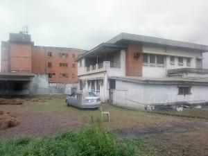 Commercial Property for rent Palmgrove Bus Stop  Ikorodu road(Ilupeju) Ilupeju Lagos