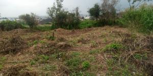 Residential Land for sale Akobo Area Akobo Ibadan Oyo