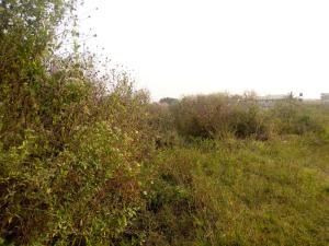 Residential Land Land for sale Almod street, Akoto Estate, Elebu Akala Express Ibadan Oyo