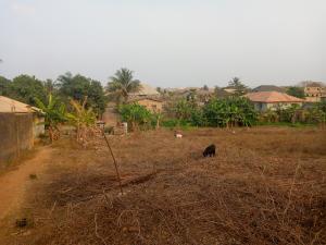 Residential Land Land for sale Progress lane, Asaaju estate off liberty Academy Akala Express Ibadan Oyo