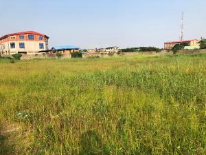 Industrial Land Land for sale Shomolu Lagos Shomolu Shomolu Lagos