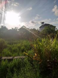 Serviced Residential Land Land for sale Thomas Estate Ado Ajah Lagos