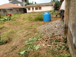 Land for rent Peace Estate Alimosho Iyanaipaja Extension Egbeda Alimosho Lagos