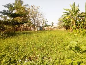 Mixed   Use Land Land for sale Olunloyo Area, Olorunsogo-Akanran road, off Lagos-Ibadan Expressway Ibadan Oyo