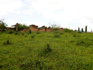 Mixed   Use Land Land for sale Progressive Estate near Heritage Estate off Oluyole-Akala Express road Oluyole Estate Ibadan Oyo