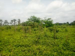 Mixed   Use Land Land for sale Akinsawe village near Ejioku-Iyana Offa axis off sukuru Iwo Rd Ibadan Oyo