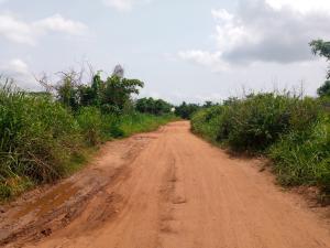 Mixed   Use Land Land for sale osuntedo labode area off pade-Arulogun road, Ojoo Ojoo Ibadan Oyo