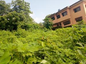 Residential Land Land for sale Oke Agala Estate opposite Vine Branch off Mokola-Parliament road Agodi Ibadan Oyo